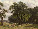 Sheep grazing in a summer landscape