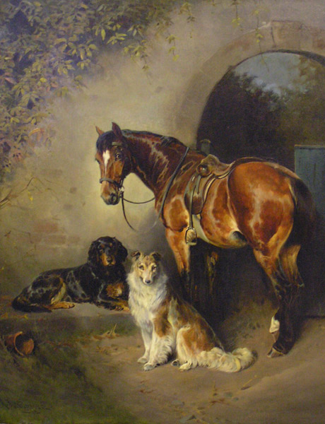 Horse and dogs