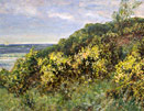 JF Slater: Gorse at Whitley Bay