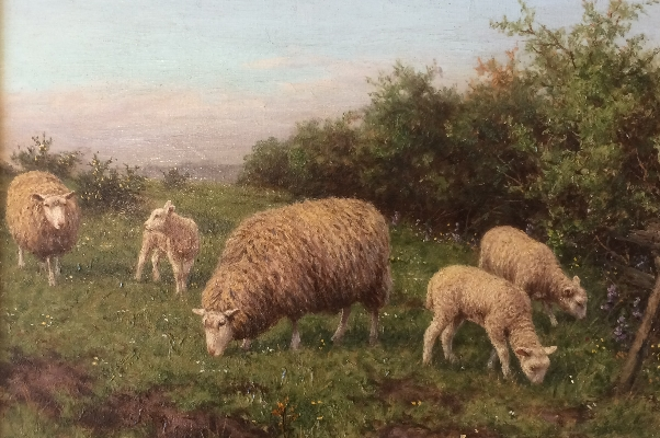 Sheep Grazing.J.Dixon Clark