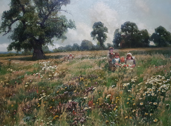A.w.redgate.Field.Flowers