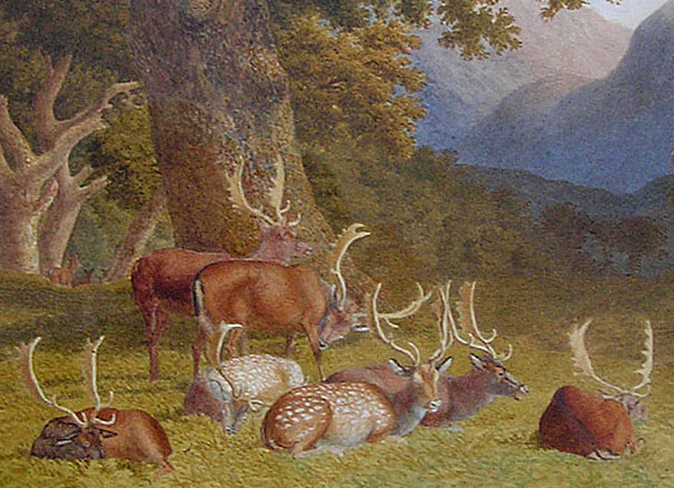 Robert Hills Deer painting
