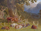 Robert Hills Deer at rest